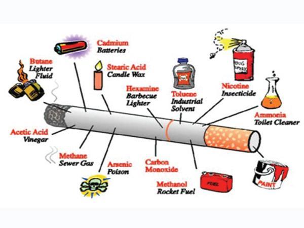 Nguồn gốc ung thư trong thuốc lá truyền thống