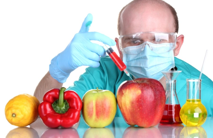 Sự thật về GMO – Sinh vật biến đổi gen