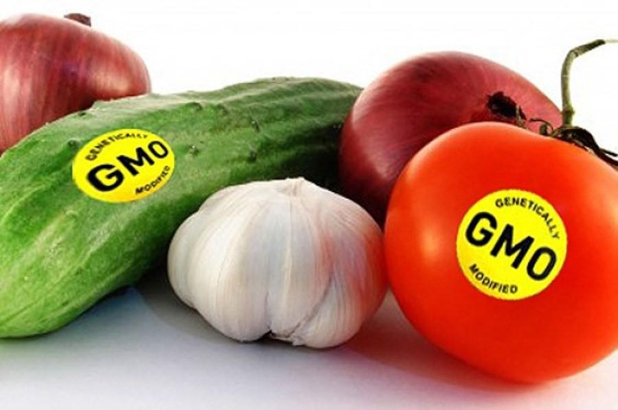 Dán nhãn thực phẩm biến đổi gen GMO: Nhìn từ thế giới về Việt Nam