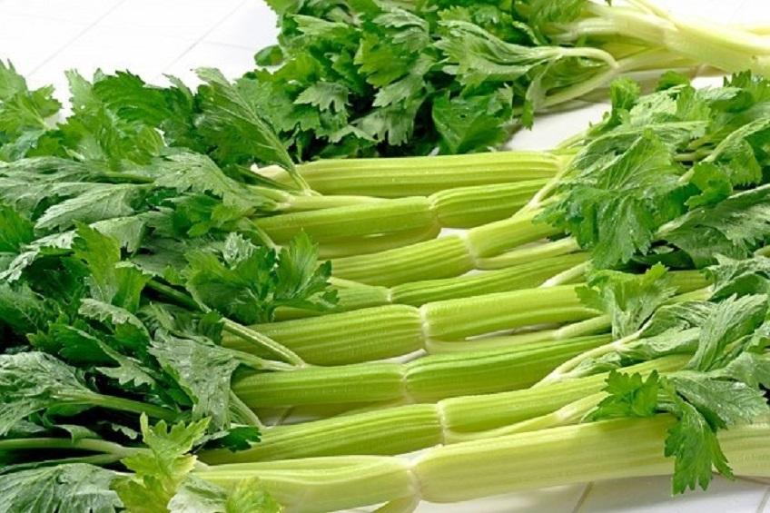 Bí quyết trồng rau cần tây trong nhà bếp siêu đơn giản