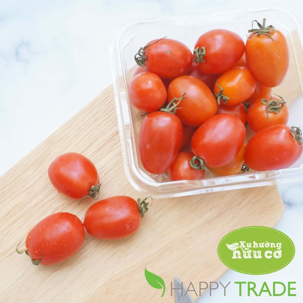 Một quy trình sản xuất rau hữu cơ cần gì?
