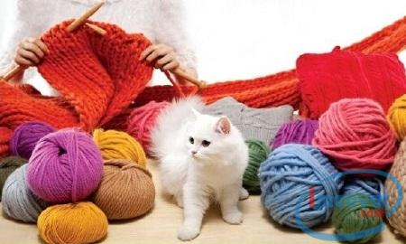 Mẹo giặt đồ bằng len sợi chống co giãn