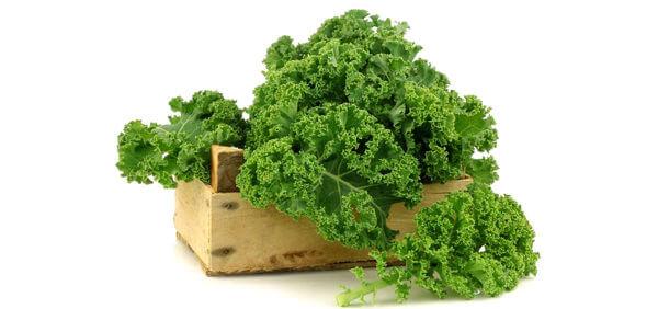 Vì sao nên chọn cải xoăn kale cho bé ăn dặm?