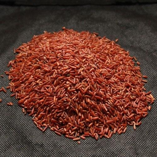 Những điều cần biết về gạo lứt nảy mầm