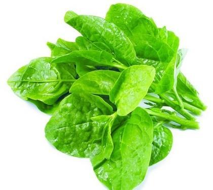 Những người không nên hoặc cần hạn chế ăn rau mùng tơi