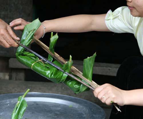 Rêu đá Thanh Sơn