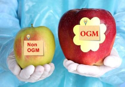 Thực phẩm biến đổi gen (GMO) là gì?