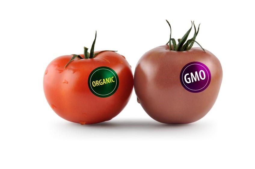 Cách nhận biết thực phẩm biến đổi gen GMO - Bảo vệ sức khỏe của gia đình đúng cách