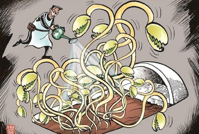 Thực trạng thực phẩm bẩn, cái nhìn tổng quát về khía cạnh sức khỏe và kinh tế