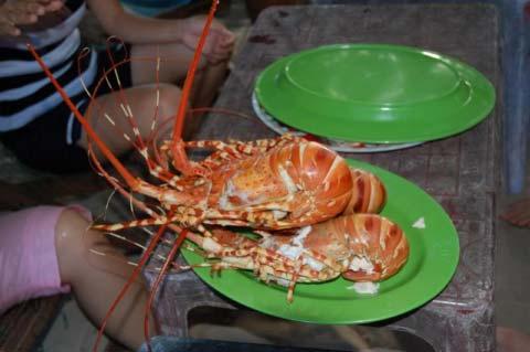 Tôm hấp nước dừa Phú Yên