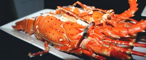 Tổng hợp các loại hải sản đảo Cô Tô
